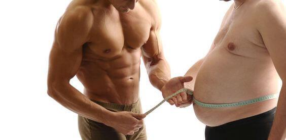 build muscle diet