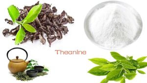 L Theanine foods